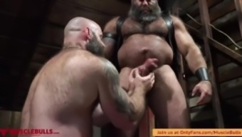 Muscle Bulls Play In The Dungeon