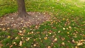 Slutty Blonde Teen Rides A Dick In Crowded Public Park